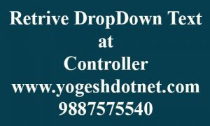 How to get DropDownList selected Text in MVC controller