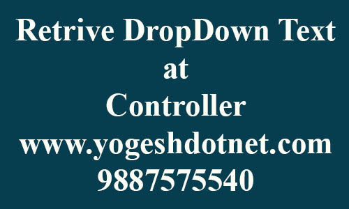 How to get DropDownList selected Text in MVC controller | code first