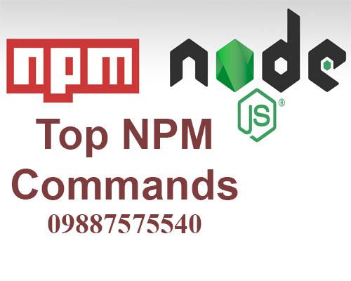 top npm commands