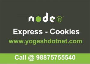 expressJS cookie parser